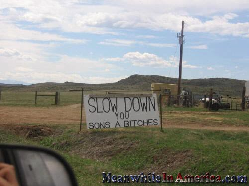 Slow Down You Sons A Bitches   slow down sons bitches MeanwhileInAmerica1