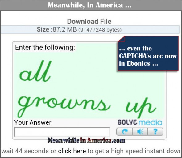 Ebonics is the New English   ebonics captcha Meanwhile In America 590x511