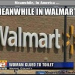 How Do You Politely Mention to Someone, They Have Flies on their Ass?   woman glued to toilet walmart Meanwhile In America 150x150