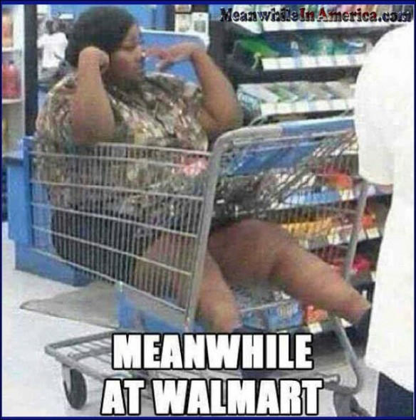 Bet You 5 Food Stamps That Her Fat Ass Stuck   fat lazy nigga bitch walmart shopping cart Meanwhile In America 584x590