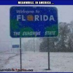 California Dreamin   florida sunshine state snow Meanwhile In America 150x150c