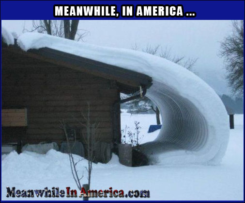 New Addition to the House   snow Meanwhile In America 30