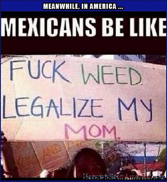 How does every immigration joke start? By looking over your shoulder.   mexicans fuck weed legalize my mom Meanwhile In America 542x590