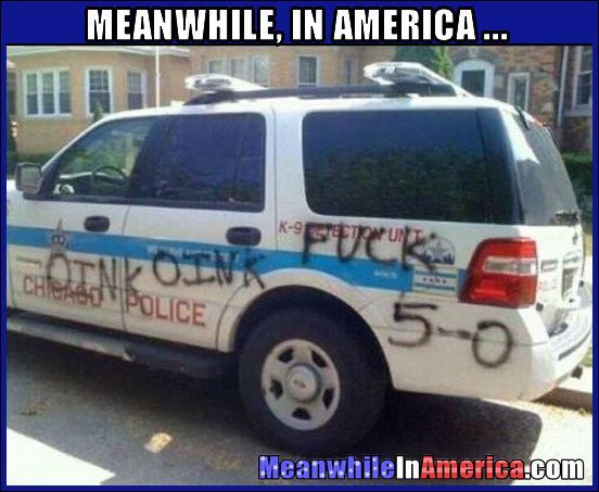 fking blm assholes graffiti police vehicle Meanwhile In America