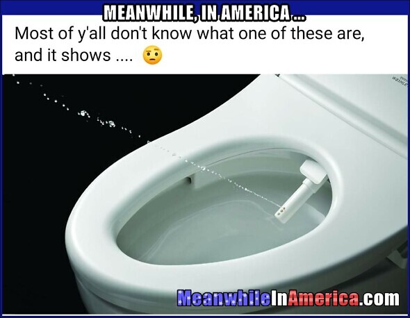 If Ya Did There Wouldnt Be a Shortage of AssWipes (Toilet Paper)   Meanwhile In America com Bidet Toilet Paper Corona Virus 590x458