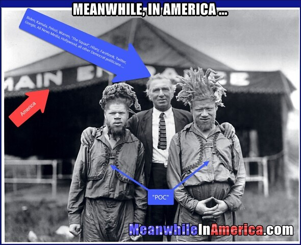 Vote Democrat, so we can manipulate you too   Meanwhile In America POC Circus 590x481